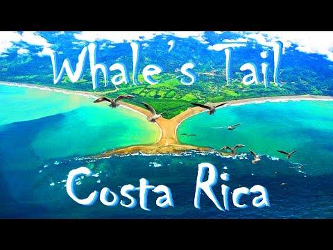 Costa Rica: Playa Uvita, Cristal Ballena Hotel