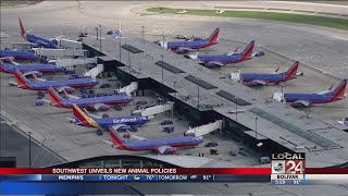 Southwest Airlines Makes Updates To Service Animal Policies