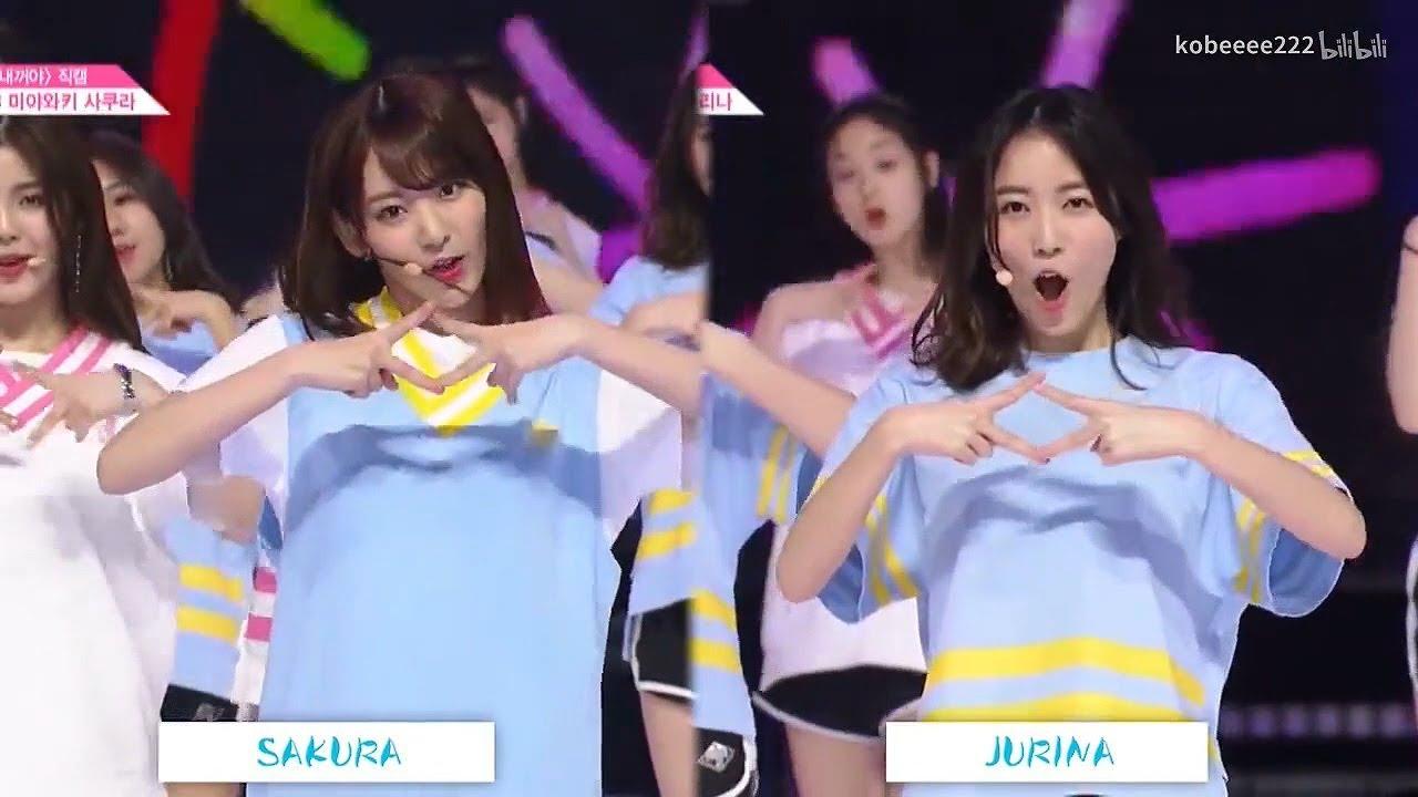Miyawaki Sakura & Matsui Jurina Dance Comparison PRODUCE48 NEKKOYA 宮脇咲良 松井珠理奈 IZ*ONE