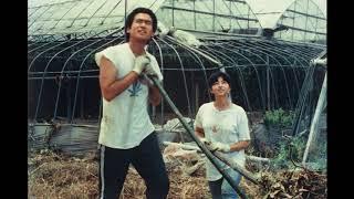Film: Distant Thunder (1981) Director: Kichitarô Negishi Huge thank...