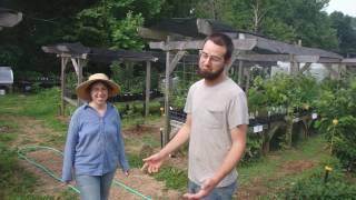 Welcome to Brambleberry Farm. Prepare to be Impressed!