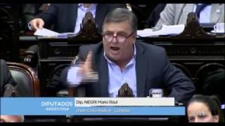 Mario Negri 2016 | Resúmen de Actividad Parlamentaria