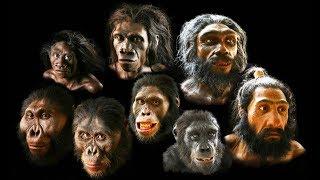 Człowiek rozumny - czym różnimy się od małp?