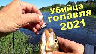 Убийца ГОЛАВЛЯ 2021 года Река Западная Двина