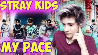 "Baixar Stray Kids ""My Pace"" M/V Реакция | jypentertainment | Реакция на Stray Kids My Pace | K-pop Реакция"