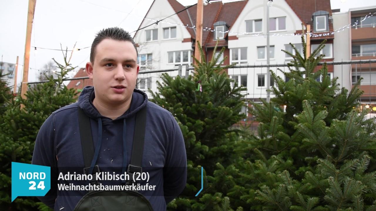 Tannenbaum Selber Schlagen Bremen.Aufgepasst Hier Könnt Euren Weihnachtsbaum Kaufen