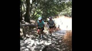 Angel Island 50k: Moo and Mo Going up the Stairs
