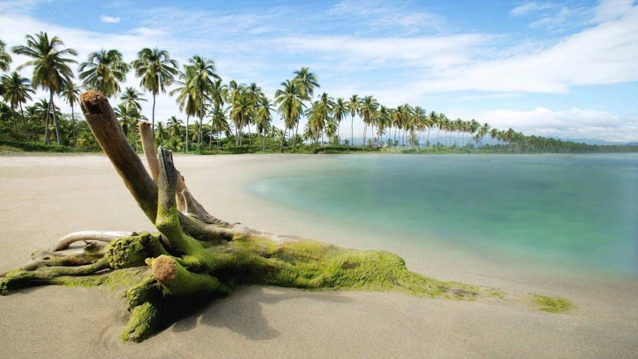 Fondo animado de la playa youtube - Fotos fondo del mar ...
