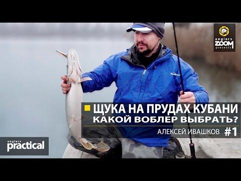 Щука на прудах Кубани. Какой выбрать воблер? Часть 1. А. Ивашков Anglers Practical