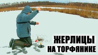 ЖЕРЛИЦЫ! Поставили живца под самый лёд на мели! Рыбалка на торфяниках!