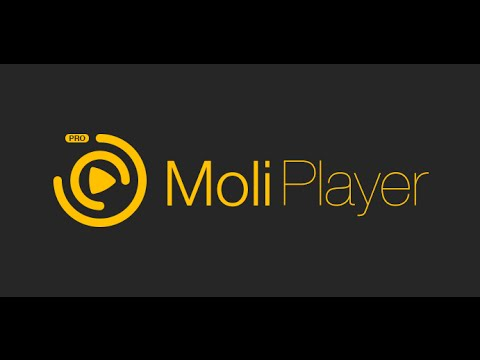 How To Download Moliplayer Pro In Windows Phone 8.1