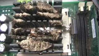 Cleaning of a Roach infested Computer Part 1