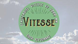 Vitesse - Hangflug Veysonnaz
