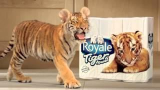 Royale Tiger (:30sec) HD - Hindi Thumbnail