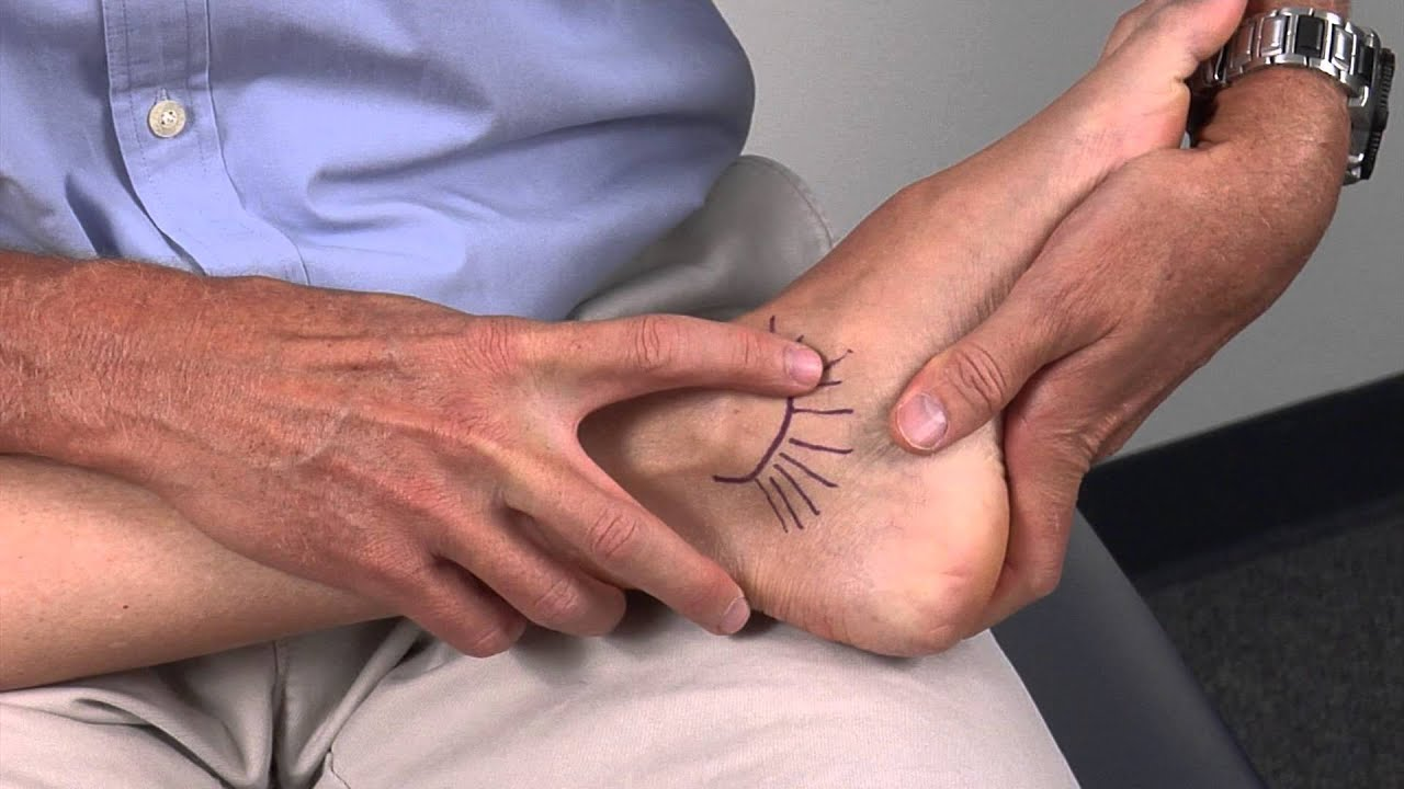 Ankle-Medial Ligaments - YouTube