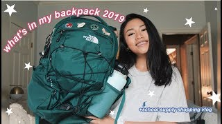 WHAT'S IN MY BACKPACK 2019 | school supply shopping vlog (sophomore year)