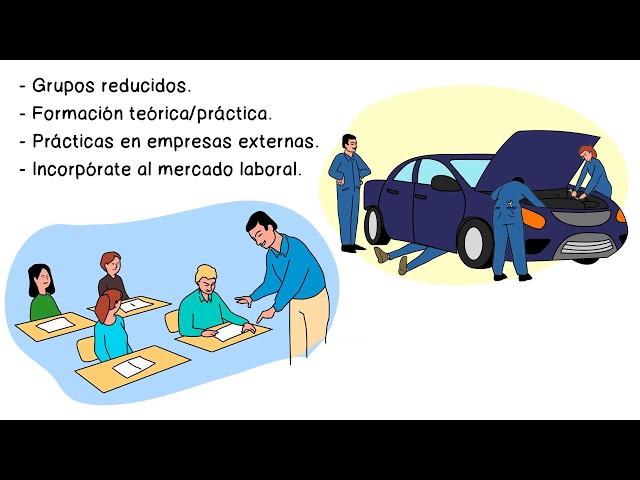 Técnico Profesional en Automoción Terrassa - C.E.T. SEGLE XX