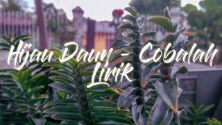 Hijau Daun - Cobalah (Lirik) | Unofficial Lyrics Video