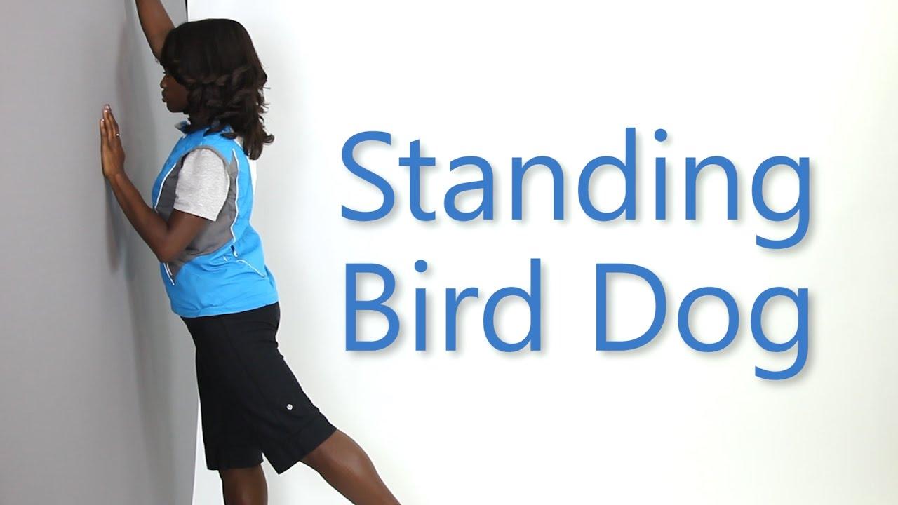 How To Do A Standing Bird Dog Alternate Exercise Health E