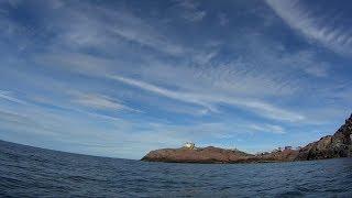Морская рыбалка в Териберке. Треска. Кольский п-ов. (ч.2)