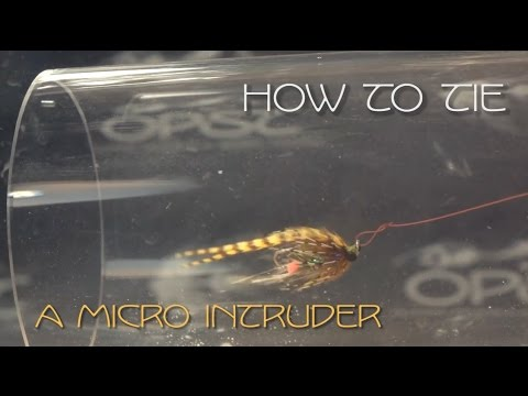 Micro Intruder Fly Tying Video - OPST