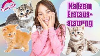 Ich bekomme eine Katze 😍 Eltern zum Haustier überreden! Häuschen bauen! Erstausstattung | Clarielle