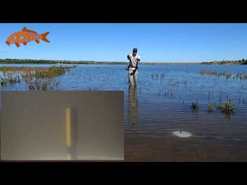 Fly Fishing For Carp Drag And Drop Presentation