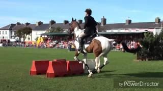 Клип для любителей лошадей.