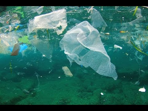 New Garbage Patch In Ocean Is 1.5 Times The Size Of Texas