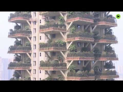 Vertical forests popping up in Chinese concrete jungles