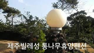 제주빌레성 통나무휴양펜션 전경