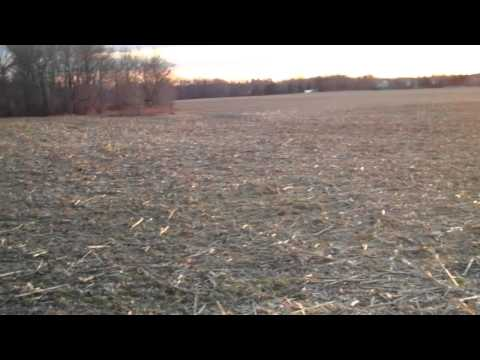 Winter cycling w 1bicycleddie, Plainsboro to Cranbury, NJ Jan 8, 2011, nice sunset 2 Travel Video