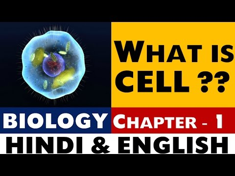 What is CELL , Chapter -1 BIOLOGY (SSC ,NDA ,UPSC ,State PSC and Govt exams )