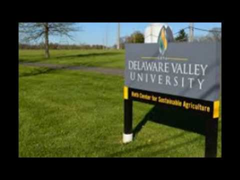 35 online graduate programs