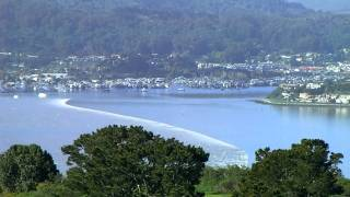 Japan Tsunami hits Bay Area Marin County