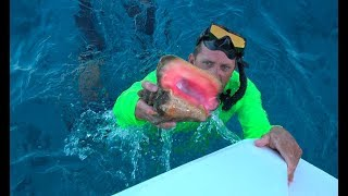 Queen Conch in The Exuma Cays, Staniel Cay {Catch Clean Cook}