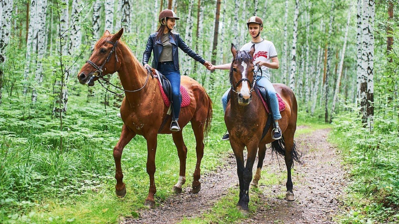 Прогулки на лошадях для двоих. Подарок-приключение - YouTube