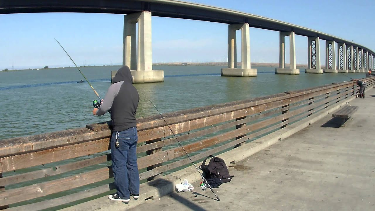 Antioch pier fishing 3 youtube for Antioch fishing report