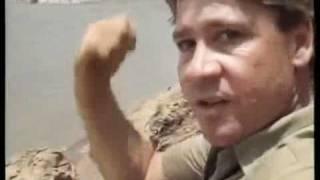 Crocodile Hunter « Gefährlich! » | [2/4] |