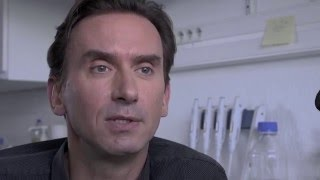 Portrait de chercheur -Olivier Raineteau
