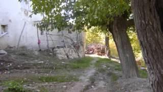 Male-Cengiz Özkan- Elazığ Baskil Geçili köyü