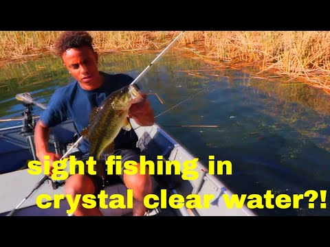 Lake Dixon Bass Fishing- San Diego CA.