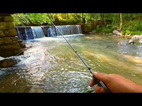 Fishing At An Old Creek Farm Mill