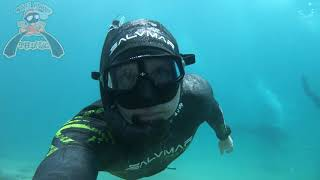 Freediving the Gold Coast Seaw…
