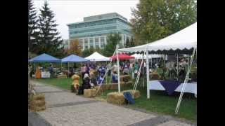 Purple Onion Festival - Indiegogo Fundraiser