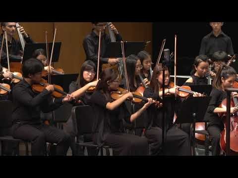 Beethoven: Symphony No. 7 Mov. 3 /Hopebox Charity Youth Orchestra