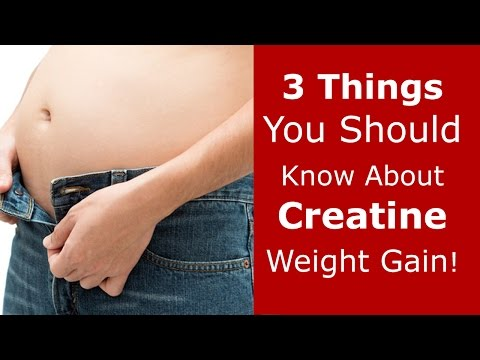 3 Things You Should Know About Creatine Weight Gain