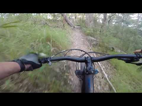 Nerang State Forest on the Specialized Levo e-bike ride