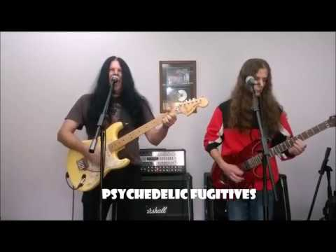 Psychedelic Fugitives - Take a Long Line - Cover
