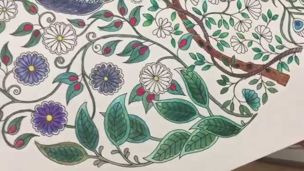 How to Use watercolor pencils with adult coloring books - YouTube